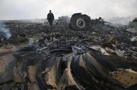 2014 Malaysian Airlines MH17 Crash