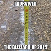 2015 U.S. Northeastern Blizzard