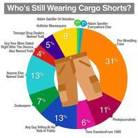 f04 cargo shorts know your meme,Cargo Shorts Meme