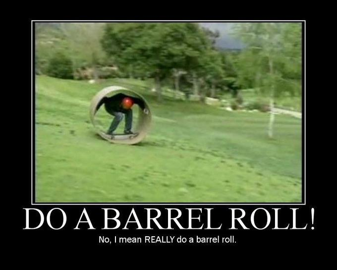 do_a_barrel_roll_really.jpg