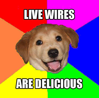 Advice_dog_live_wires.jpg