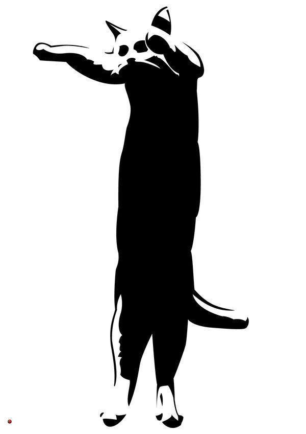 Extended_Feline_by_ShinjiHikari.jpg