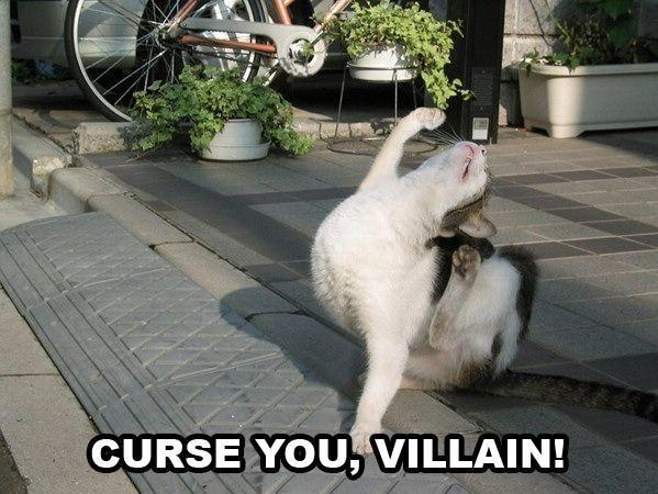 cat-curse-you-villain.jpg