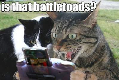battretoads.jpg