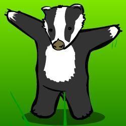 badger_badger20110724-22047-o9lu8e.jpg