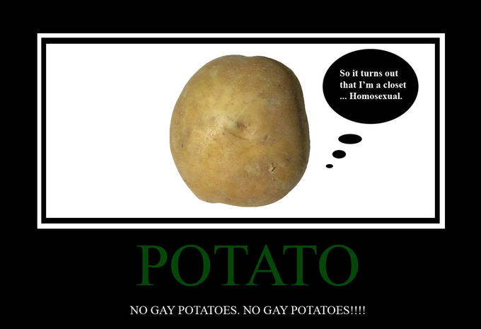 No_Gay_Potatoes.jpg