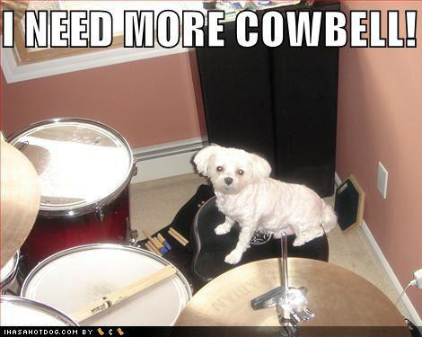 loldog-i-need-more-cowbell.jpg