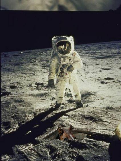 basement-horse-on-the-moon-3572-1233775896-1.jpg