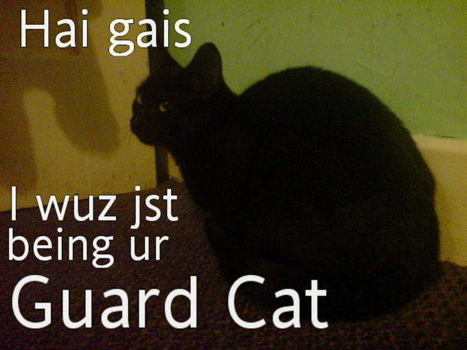 Lilleth_guardCat.jpg