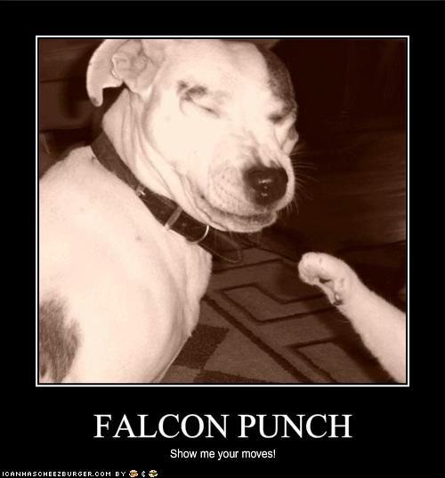 falcon_punch_dog.jpg