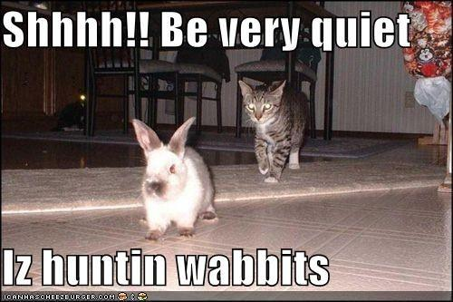 funny-pictures-cat-asks-you-to-be-quiet-because-he-is-hunting-rabbits.jpg