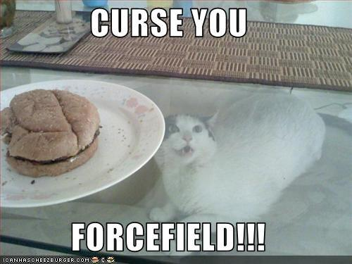 funny-pictures-cat-curses-the-forcefield-of-the-cheeseburger.jpg