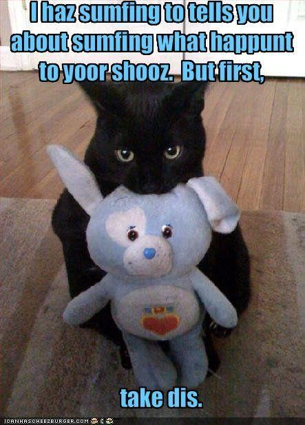 funny-pictures-cat-brings-you-a-bribe1.jpg