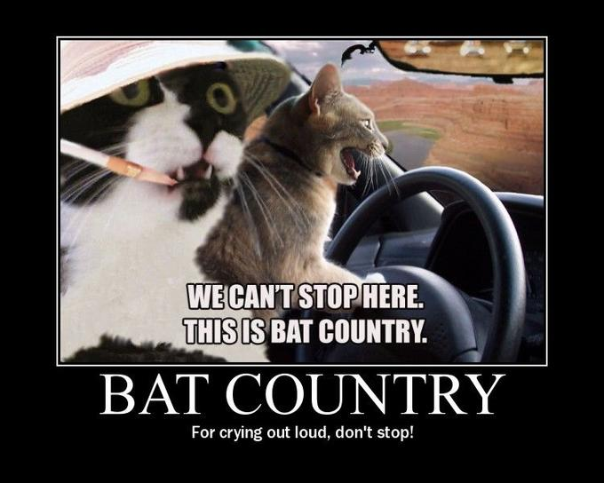 bat_20country.jpg
