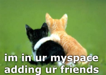 seehere.blogspot.com_20cats_20_3_.png
