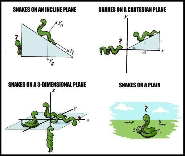 Snakes_on_Planes____A_Study_by_bananagram.jpg