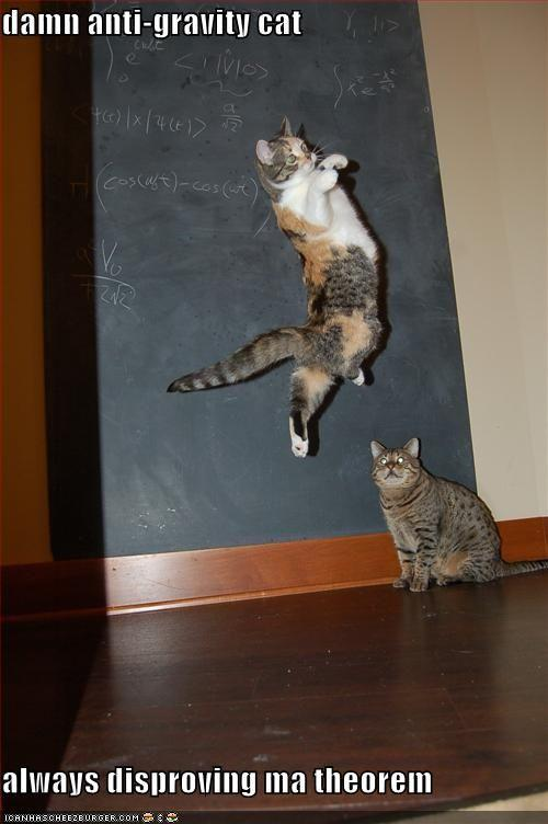 funny-pictures-anti-gravity-cat-chalkboard.jpg