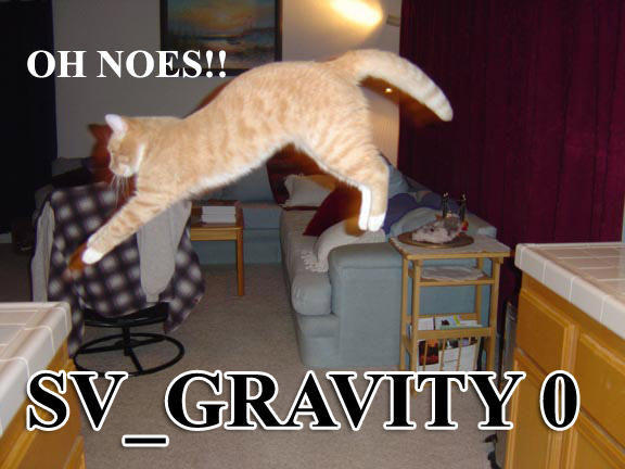 gravity-cat.jpg