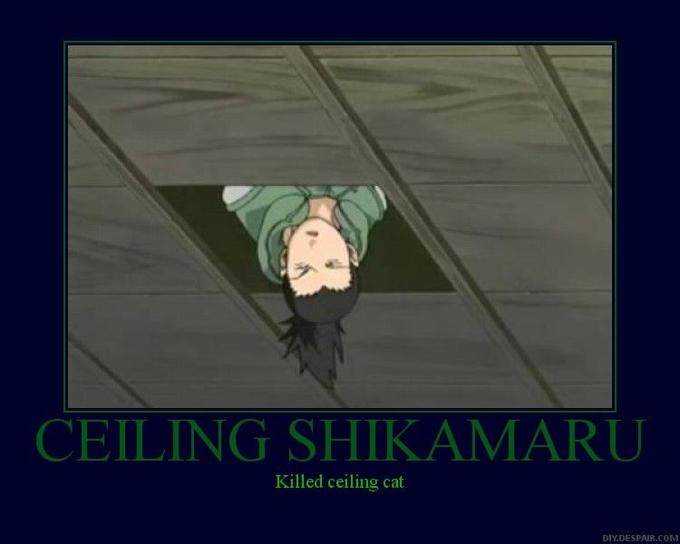 Ceiling_Shikamaru_Motivator_by_SwimmingInBlood.jpg