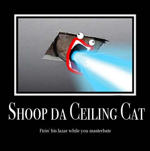 Shoop_da_Ceiling_Cat_by_Little_Lovely.jpg