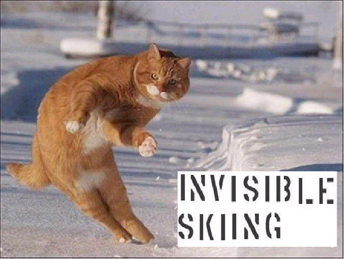 Invisible_skiing_by_Nights557.jpg