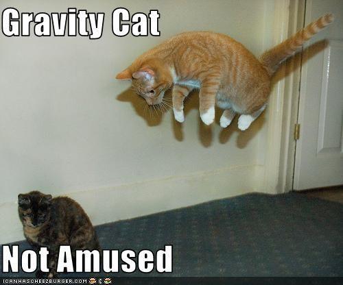 Lol_Cat_by_mariovslink.jpg