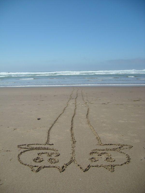longcat-tacgnol-surf.jpg