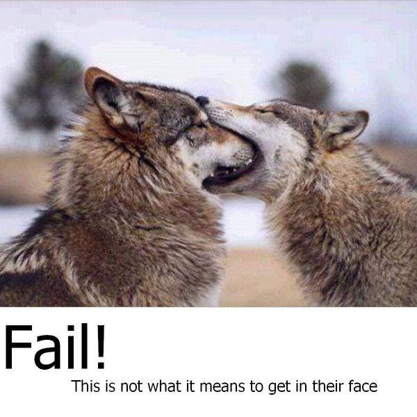 Fail_by_horsegurlsierra.jpg