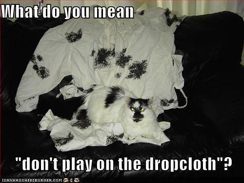 dropclothtj8.jpg