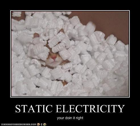 funny-pictures-cat-does-static-electricity-right.jpg