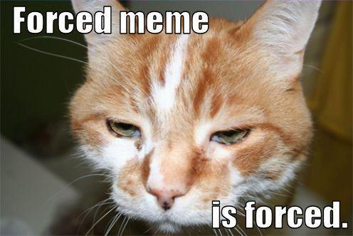 forced_meme_is_forced_trollcat.jpg