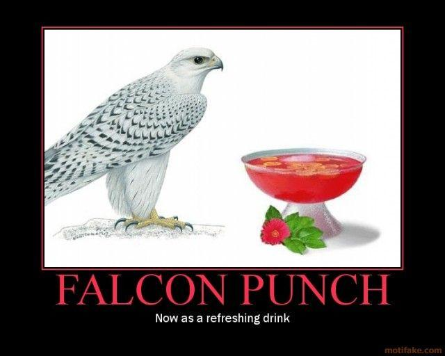 falcon-punch-falcon-punch-drink-demotivational-poster-1232958157.jpg