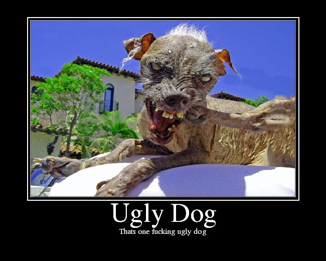 UglyDog.png