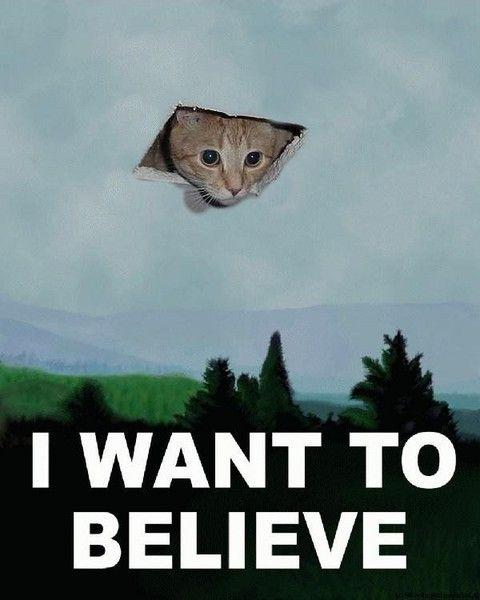 Ceiling_Cat__I_want_to_believe.jpg