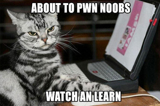 noob_pwning_trollcat.jpg