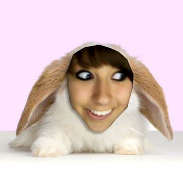 Rabbit_Boxxy.png