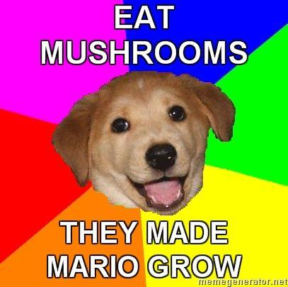 Advice-Dog_Mushrooms.jpg