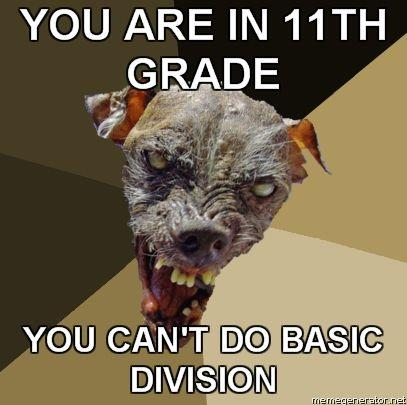 Ugly-Dog-YOU-ARE-IN-11TH-GRADE-YOU-CANT-DO-BASIC-DIVISION.jpg