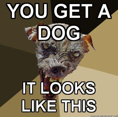 Ugly-Dog-YOU-GET-A-DOG-IT-LOOKS-LIKE-THIS.jpg
