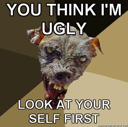 Ugly-Dog-YOU-THINK-IM-UGLY-LOOK-AT-YOUR-SELF-FIRST.jpg