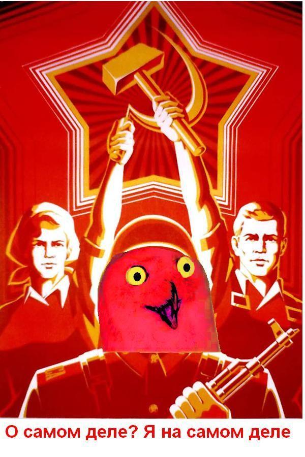 lol_russian_propaganda_orly.JPG