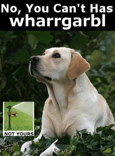 no_wharrgarbl.jpg