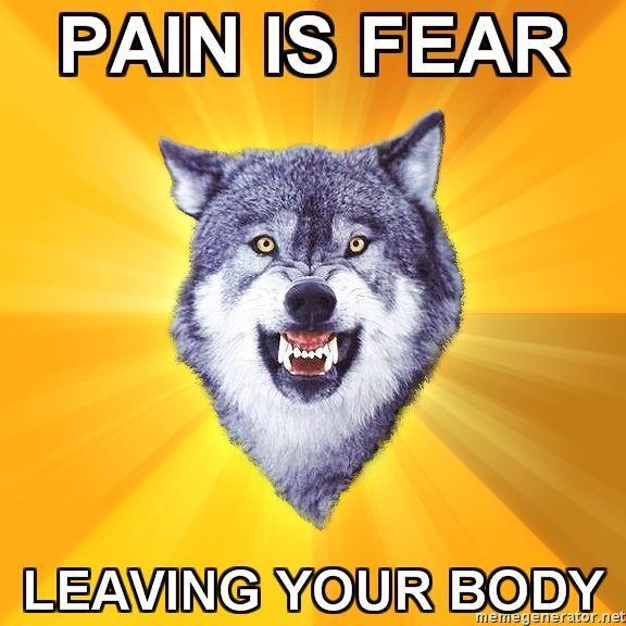 courage_wolf_1.jpg