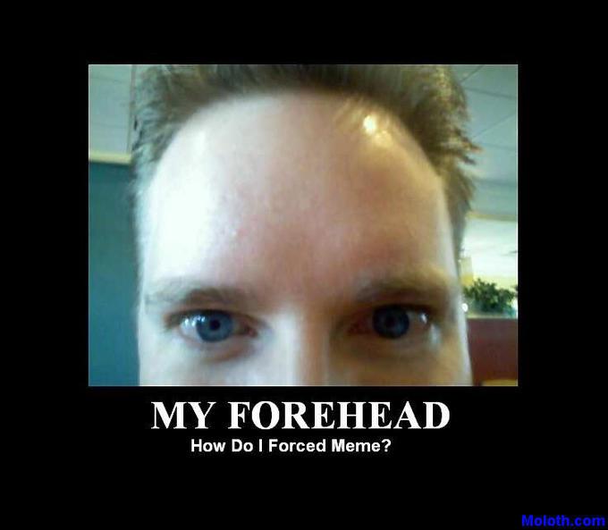 ForcedMeme.jpg