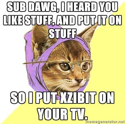 Hipster_Kitty_-_sub_dawg_I_heard_you_like_stuff_and_put_it_on_stuff_so_i_put_xzibit_on_your_tv.jpg