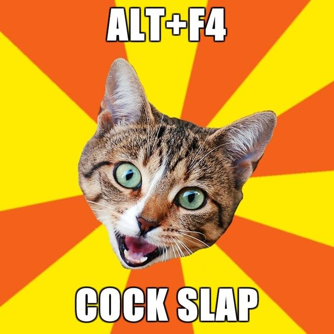 Bad-Advice-Cat-altf4-cock-slap.jpg