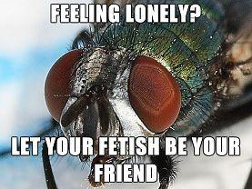 fetish_fly_lonely.jpg