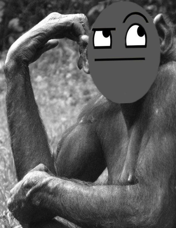 awsome_monkey.jpg