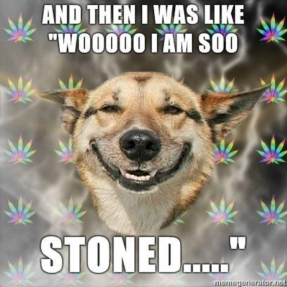 Stoner-Dog-and-then-i-was-like-wooooo-i-am-soo-stoned.jpg