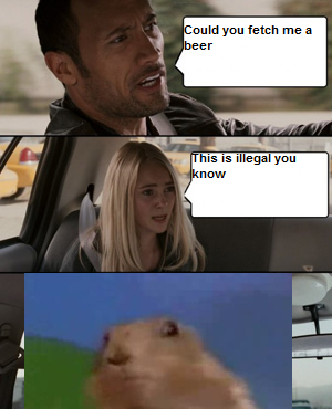 rock_drunk_driving.png
